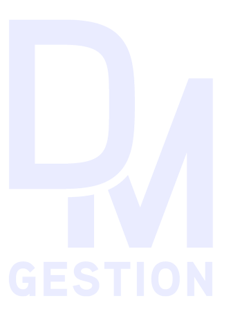 DMGestion_Logo_exp